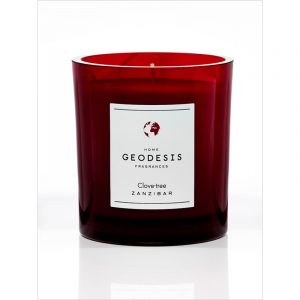 geodesis scented candel